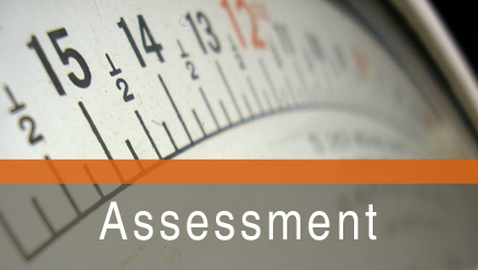 Assessment for Probation Supervision